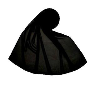 Premium Chiffon Plain Stole - Black